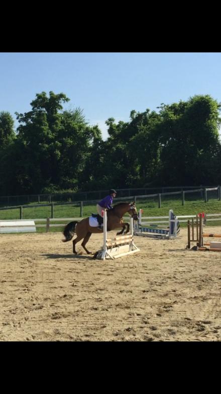 Remus jump