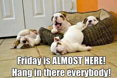 Image result for almost friday gif